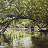 Passing Under the Willow Bridge